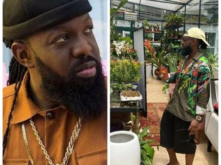 Trikytee & others react as Timaya shares cool photos of himself shopping in a plant shop