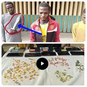 Police arrest Teenagers with dangerous Weapon, 20 stolen Phones and 409 Sim-Cards (Video)