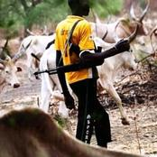 Farmlands Worth Millions Set Ablaze By Fulani Herdsmen At Osun State.