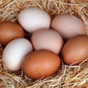 Here is the meaning of dreaming about eggs in the dream
