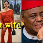 Fani-Kayode Beats Me When I Was Pregnant With Tripplet It Was My Mother That Saved Me - Ex-wife