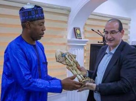 Westerners are more sympathetic to us than Arabs - Zulum