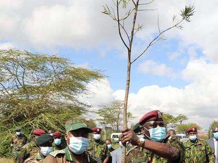 KFS & GSU Partner To Grow 10,000 Trees At The Recce Training Camp
