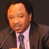 My Friend Who Mined Gold In Kaduna Is Now Drilling Borehole Because Of Kidnappers - Shehu Sani
