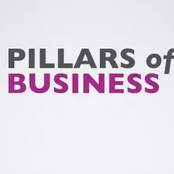 6 pillars of business success