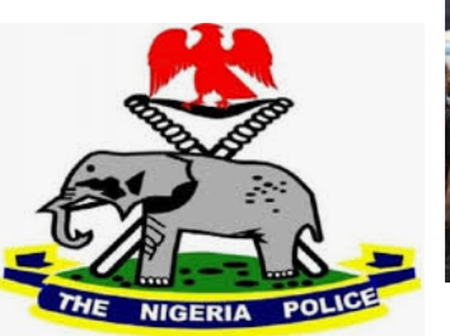 Nigerian Police Force launches site for reporting cybercrimes activities