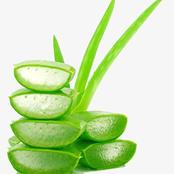 Check out this 8 Amazing benefits of aloe Vera for your skin