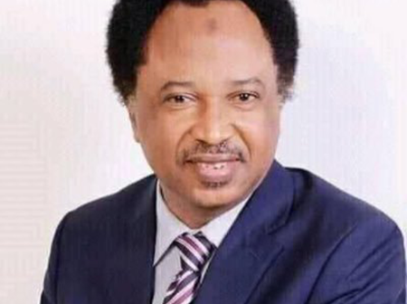 Read what Shehu Sani claimed he did in order to prove that Yorubas and Fulanis are one