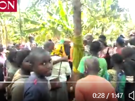 Wonders Will Never End, Kirinyaga Residents Surround A Tree They Believe Has An Image Of Virgin Mary