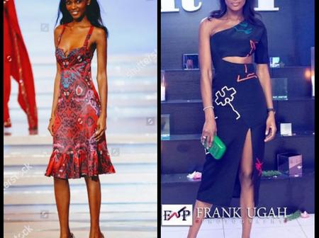 Check Out Recent Photos of the 18yrs Old Nigerian Who is First Black To Win Miss World in 2001.
