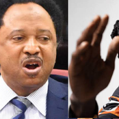 Bandits: Shehu Sani Replies Naira Marley, See What He Said To Him That Sparked Reactions