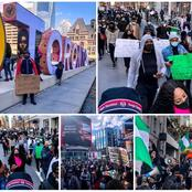 EndSars: Nigerians Abroad Joins Protest, See Pictures From Toronto