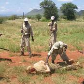 Poachers caught and killed in Kruger National Park.