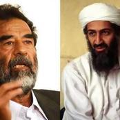 صدام حسين وأسامة بن لادن.. يعودان من جديد في ظهور مفاجئ وغريب