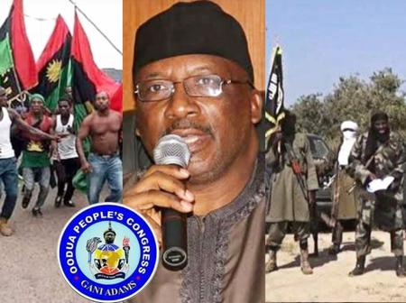 Abdulrahman Dambazau Accuses IPOB and OPC, Says They Are Terrorist Group Like Boko Haram