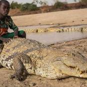 People From This Place Live Normal Life Among Crocodiles.