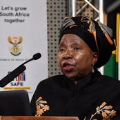 Nkosazana Zuma granted leave to appeal high court judgment that tore inti her tobacco ban