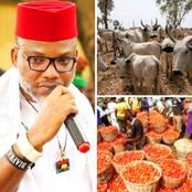 Opinion: These Terrible Things May Happen in The South if Foodstuffs Scarcity Continue Hitting South