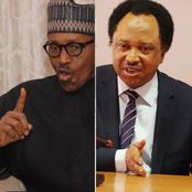 Shehu Sani Reacts After Buhari Directs Security Agencies To Shoot Anyone Seen With AK-47