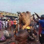 See What Endsars Protesters Did At Ijebu Ode That Is Making People To React (Photos)