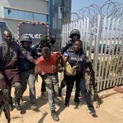 Police Storms Armed Robbers Hideout: Live Tortoise Retrieved - Full Details