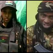 Opinion: IPOB and ESN have never been the problem, we need to checkout the bandits in the North