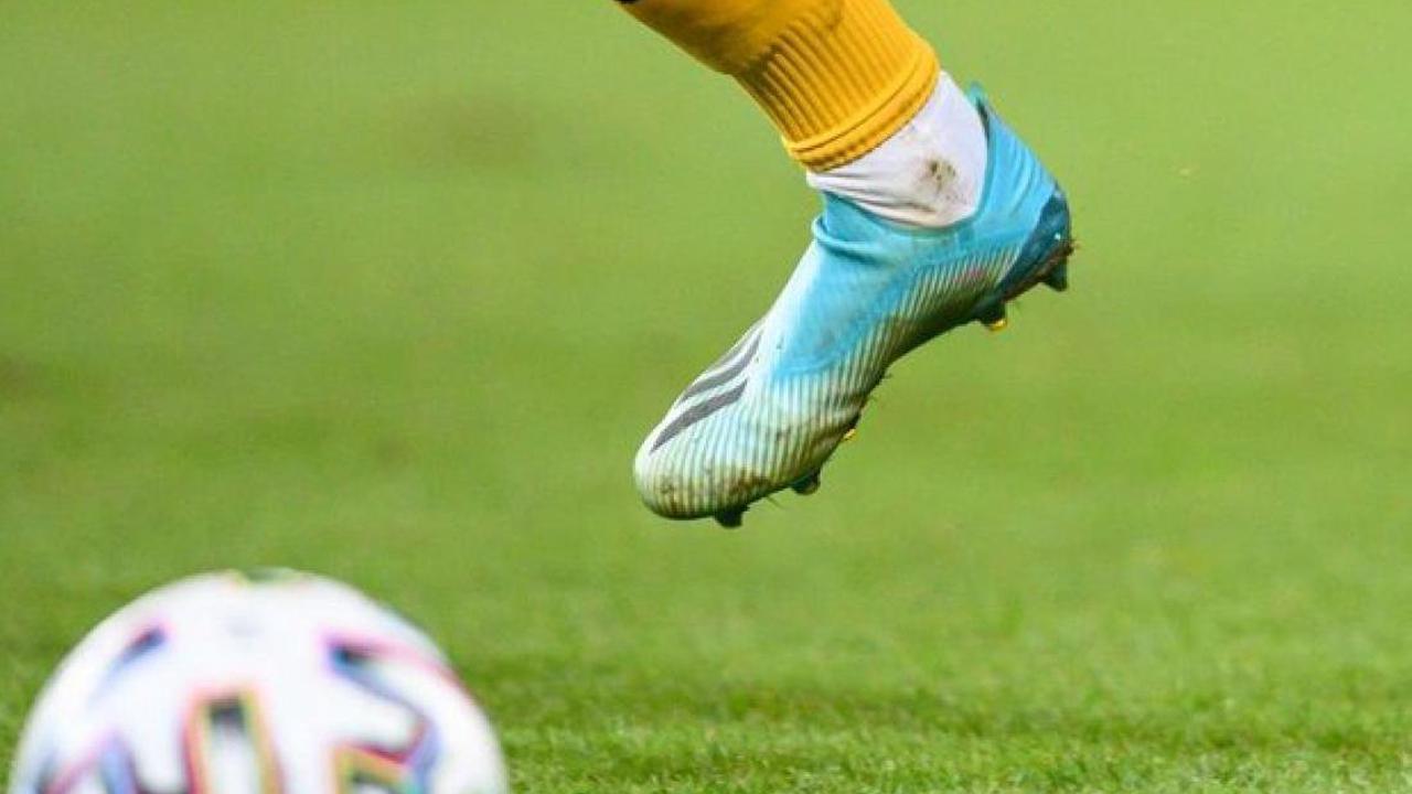 Fußball: Spiel vor halber Kulisse: Hansa setzt gegen Schalke auf Fans