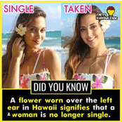 Random Facts you never knew about.