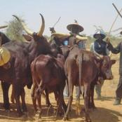 Miyetti Allah Blows Hot After Accusing Sunday Igboho Of Allegedly Killing Wakili, The Fulani Warlord