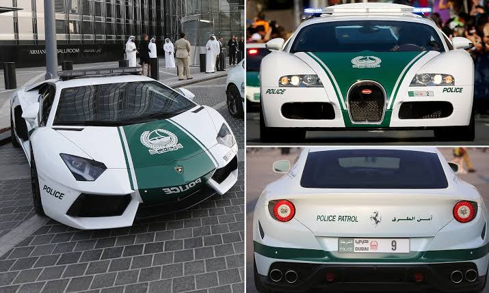 Top 11 Spectacular Things That Can Only Be Seen In Dubai