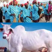 Man Laments Over Igbo's Extravagant Burial rites. Check Out what he Said That Stirred Reactions.