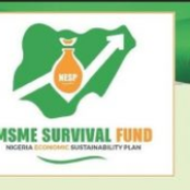 Step by step on how to access small medium enterprise loan from FG