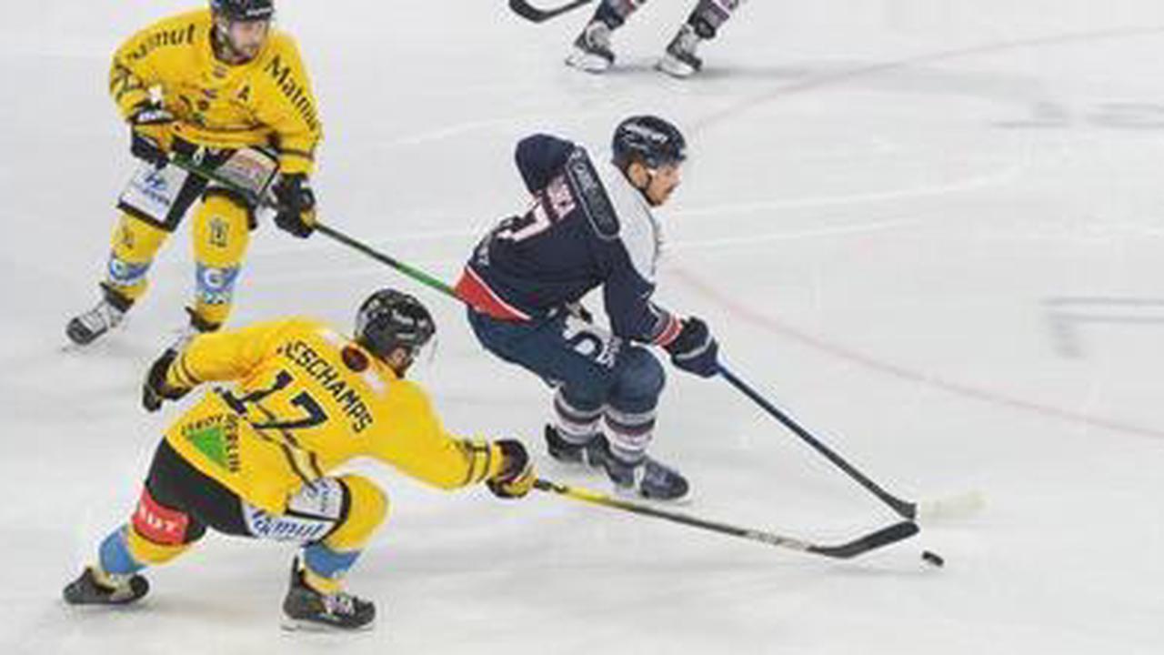 Hockey sur glace. Les Ducs d'Angers naviguent à vue