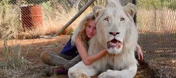 Top 10 wild animals you can own