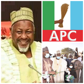 Opinion: How One Village One Project Helped APC Won Elections In Jigawa State