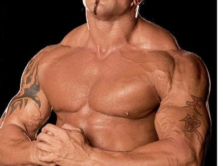 Smack down Superstar Batista: Biography.