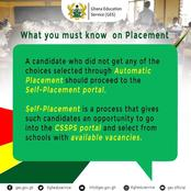 The Steps on Authomatic and Self-Placement as GES releases SHS placement soon - GES