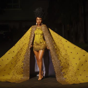 Check Out How Celebrities Dressedso for the Premiere of Coming to America 2.