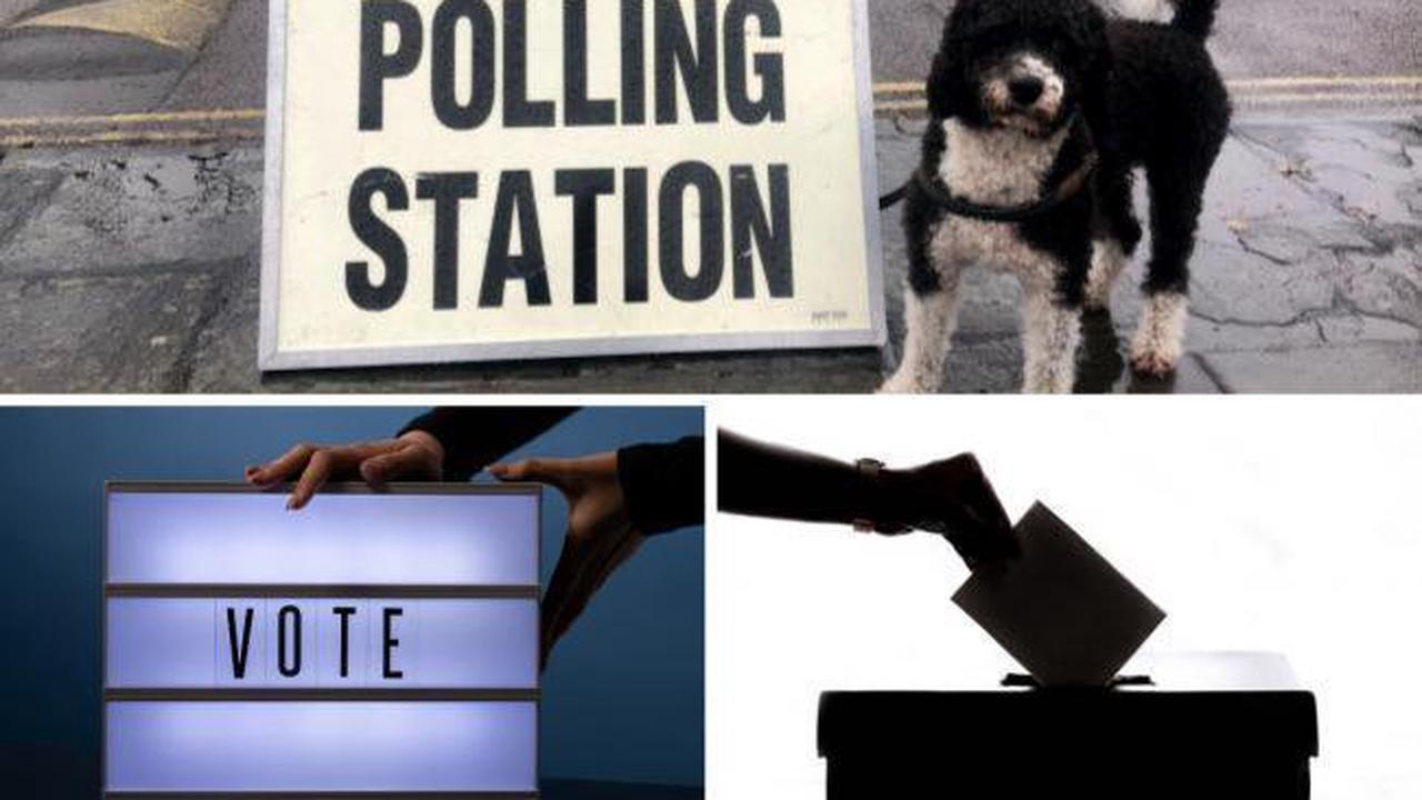 Time running out to register for vote in local elections