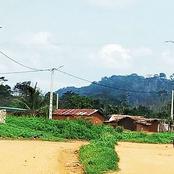 Électrification rurale : 411 localités électrifiées au cours du premier semestre 2020