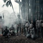 The Last Standing Tribes of Earth