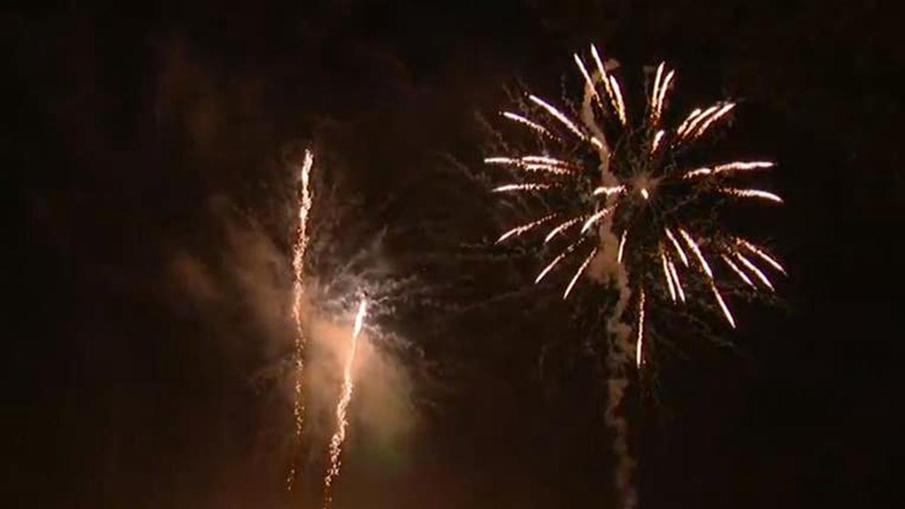 Brevard County inmates to comfort shelter dogs during Fourth of July fireworks