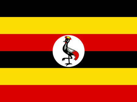 Fury And Anger in Uganda as National Flag is Hoisted Upside Down