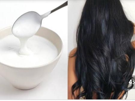 See How Your Hair Can Reap Immense Benefits From Yoghurt!
