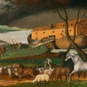How Did Fish And Other Aquatic Lives Survive In Noah's Ark? See Replies A Facebook User Got