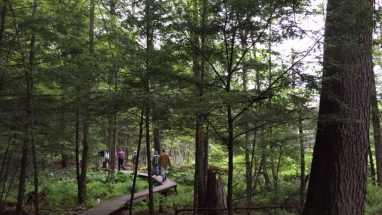 Litchfield County parks among hiking spots for Jan. 1