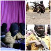 HumAngle Shares Pictures Of Boko Haram Training Kids