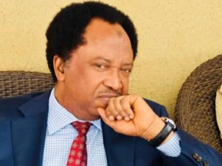 Shehu Sani advises Buhari on how to have a good trip as he goes to London for his medical trip