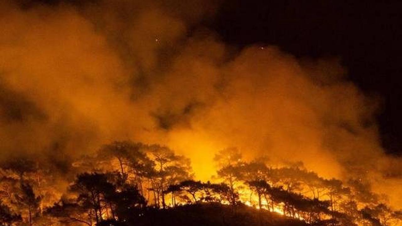 Incendies à répétition en Grèce et Turquie