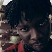 Social Buzz: See Stonebwoy's response to a fan who warned him